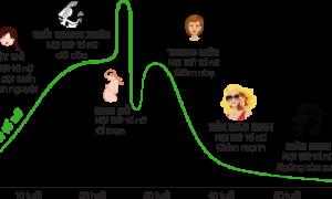 Biểu đồ suy giảm nội tiết tố nữ Estrogen