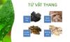 Tác dụng của bài thuốc tứ vật thang trong Viên uống Bảo Xuân