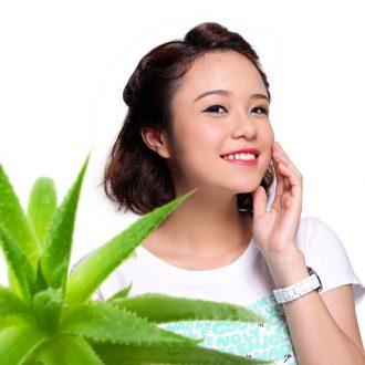 Cây nha đam | Công dụng của cây nha đam đối với sức khỏe