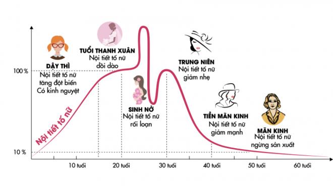 Biểu đồ nội tiết tố nữ estrogen ở phụ nữ qua các giai đoạn