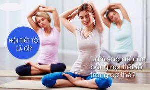 Công dụng bất ngờ của bài tập yoga cân bằng nội tiết tố nữ