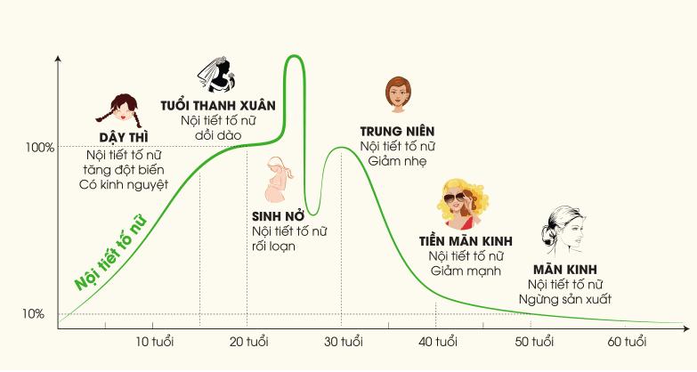 Nội tiết tố nữ suy giảm theo từng giai đoạn trong đời người phụ nữ.