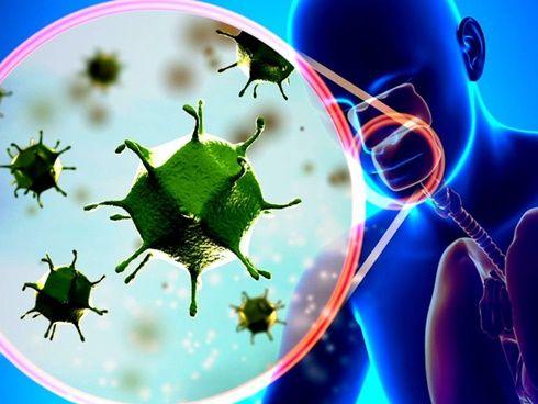 Tăng cường miễn dịch virut corona nhờ bổ sung nội tiết tố nữ