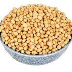 Tại sao bạn nên bổ sung mầm đậu nành không biến đổi gen