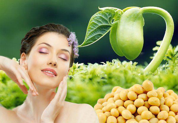 Tinh chất Estrogen từ mầm đậu nành