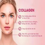 Khám phá 7 tác dụng của collagen mà bạn chưa biết
